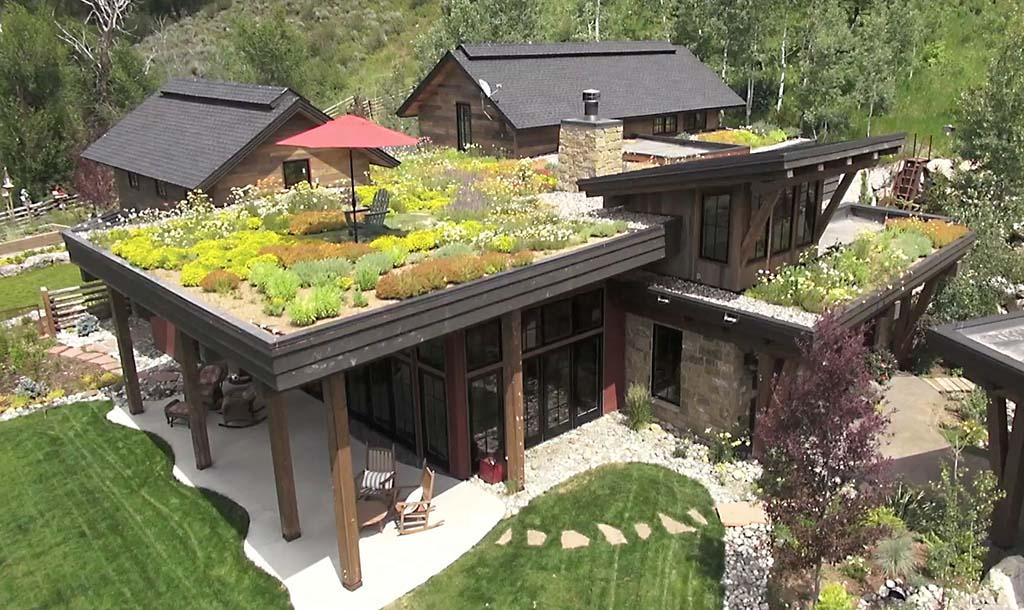 sustainable rooftop garden by gerber berend design build
